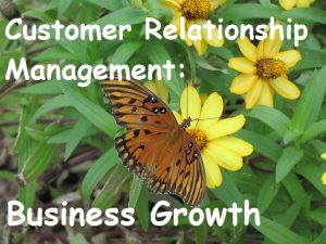 Customer Relationship Management for Business Growth